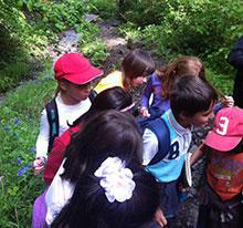 La Moixera, Educació Ambiental