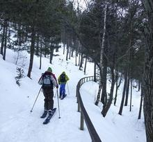Descens Freeride: Tossa de Braibal