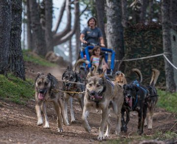 SUMMER MUSHING