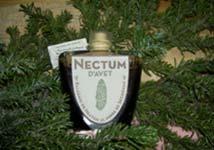 Nectum